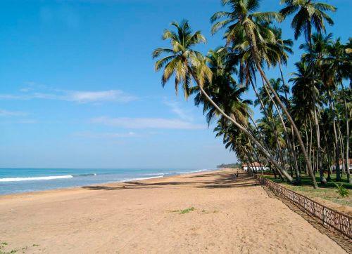 Royal Palms Beach 5*